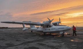 Flying high: Aerial surveys of polar bears