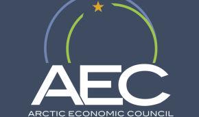 Арктический экономический совет