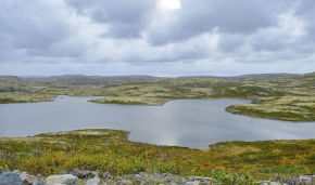 State Duma adopts law on second Far Eastern hectare in Arctic