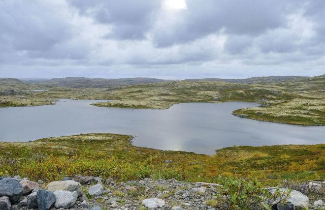 Президент подписал закон о втором дальневосточном гектаре и гектаре в Арктике