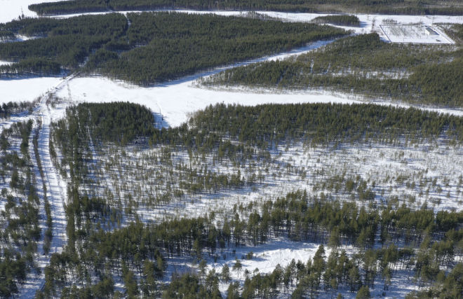 Arctic Hectare program participants get first land plots