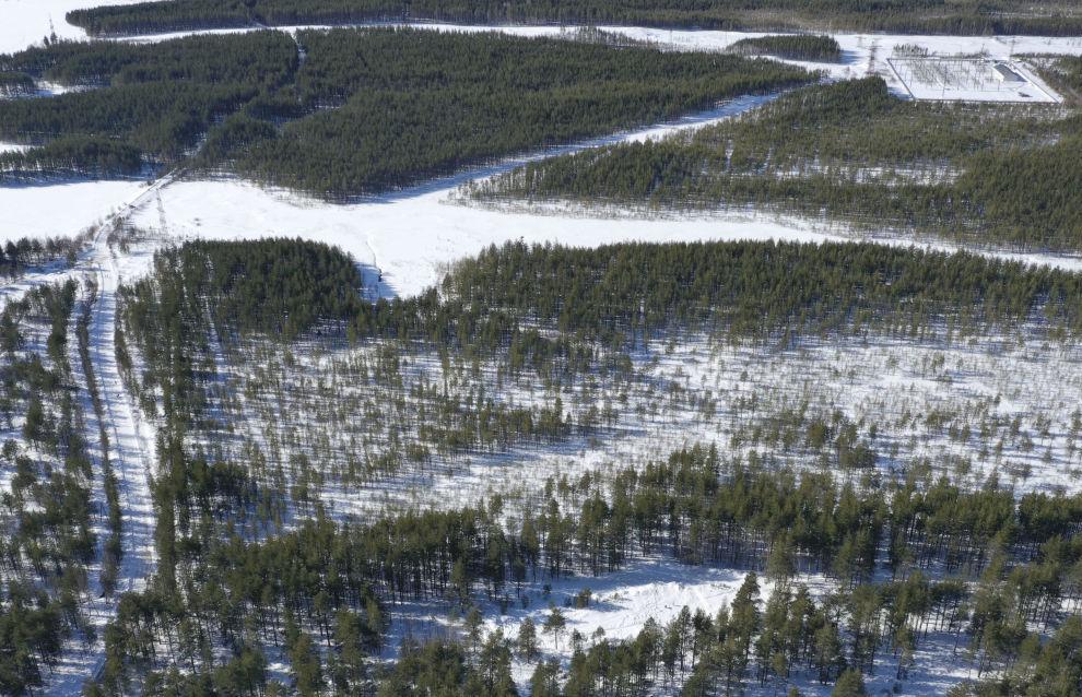«Арктические гектары» получили первые участники программы