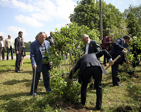 Honorary guests plant lilac bushes