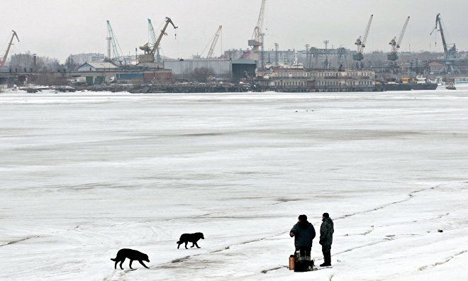 Center for Arctic Studies to be set up in the Arkhangelsk Region