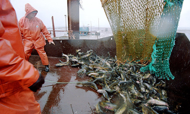 Arctic countries agree on regional fishing ban
