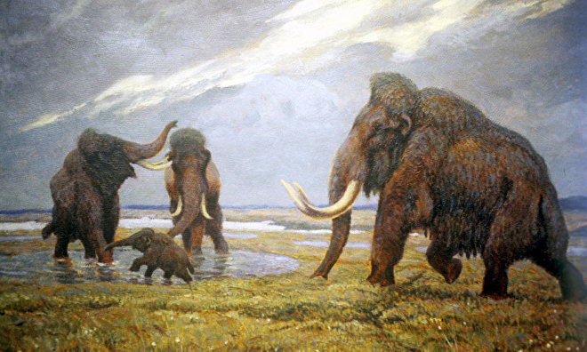 Scientists: Climate change, not humans, are to blame for the mammoth's extinction