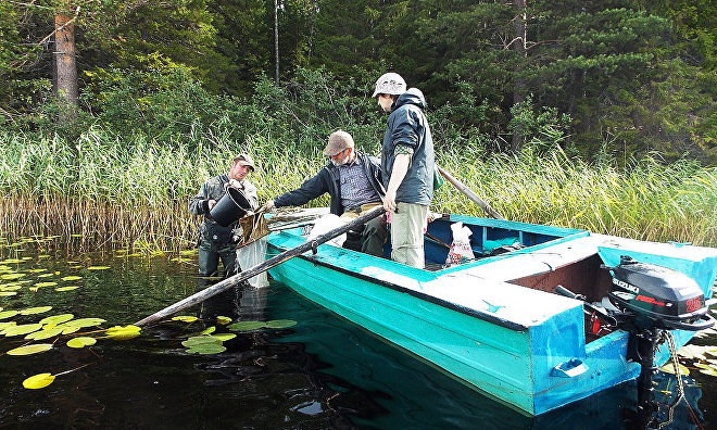 Scientists to create 3D models of the Onega Peninsula lakes