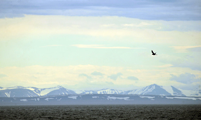 Northern Fleet hydrographers discover a new island in the Russian Arctic