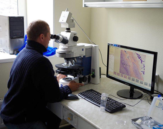 Working with a microscope at the Russian scientific center's chemical laboratory on Spitsbergen (Svalbard)