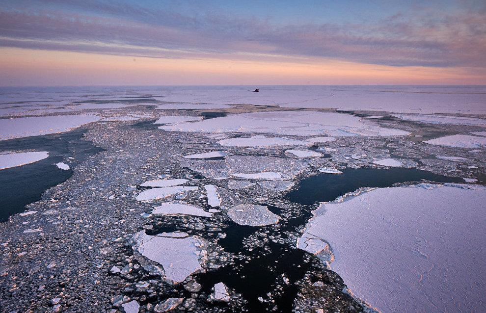 Российские учёные обнаружили высокую концентрацию микропластика в российской части Баренцева моря