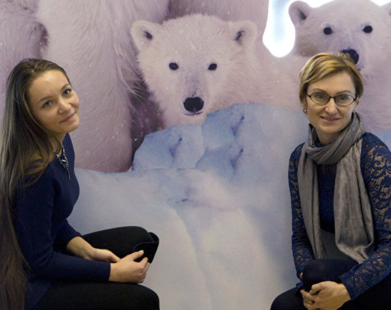Stand presenting the polar bear