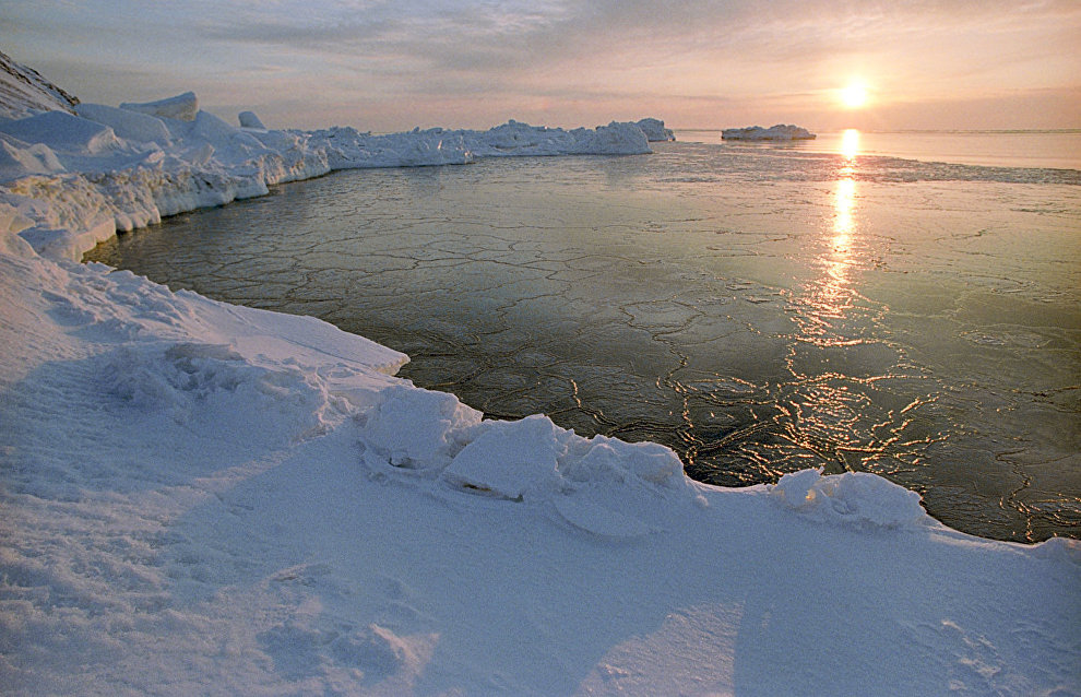 Donskoi: Russia's Arctic regions could be hit hard by climate change