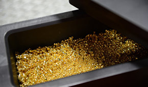 Chukotka mines over 27 metric tons of gold this year