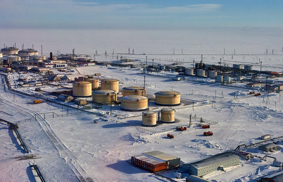 Kovtun: Rosneft, Gazpromneft to resume Arctic shelf development in 2017