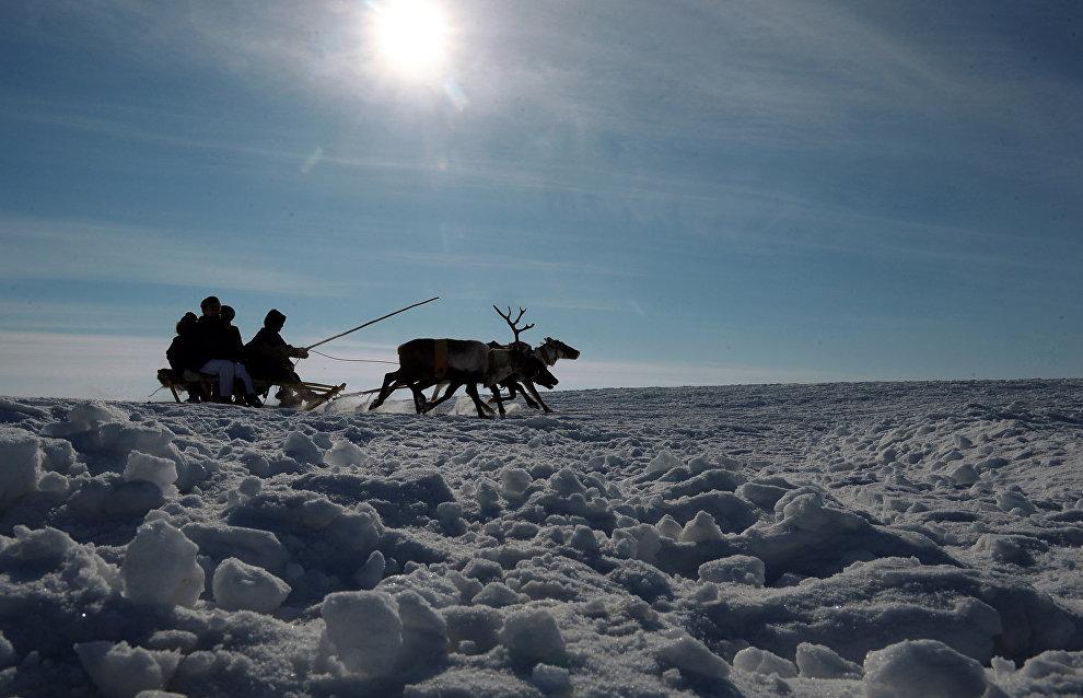 Group of Chinese tourists visits Nenets Autonomous Area