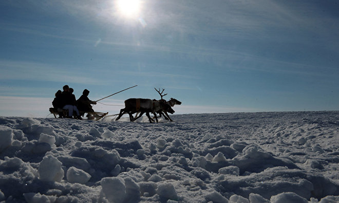 Group of Chinese tourists visits Nenets Autonomous Area