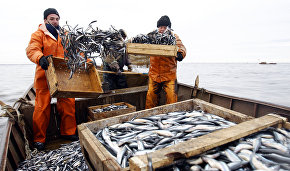 Norway ratifies a new agreement on fishing in the Arctic