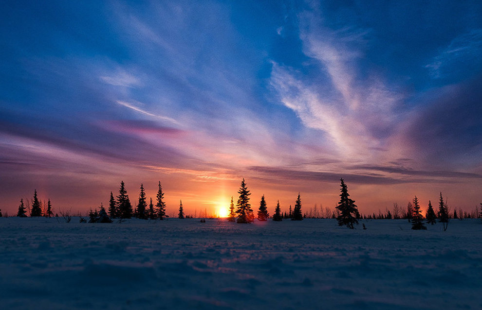 The northern halo effect