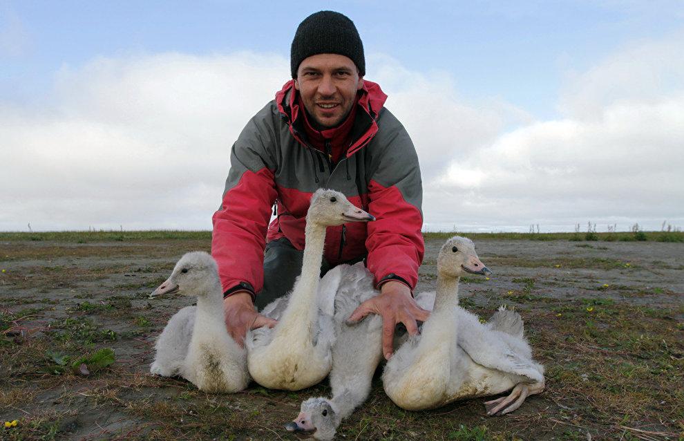 Ornithologist and biogeographer Pyotr Glazov
