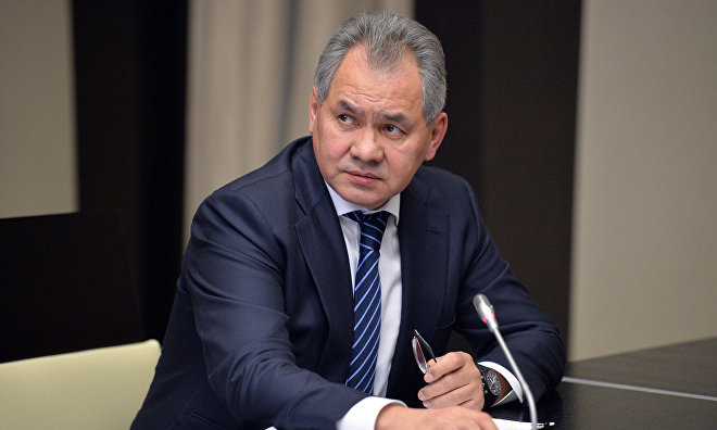 Shoigu: Russian Geographical Society to make Arctic more accessible