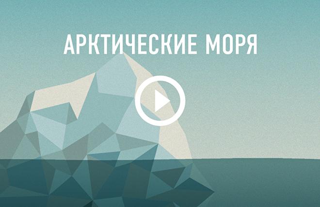 Арктические моря
