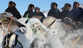 Reindeer Day celebrations kick off in Yamal