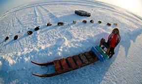 Ростуризм планирует разработать международные стандарты для туризма в Арктике