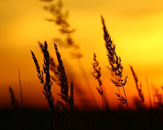 Sunset on Kost-Nos