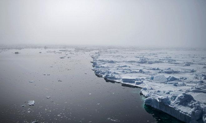 Irina Orlova: Ice floe found for Barneo 2016 expedition