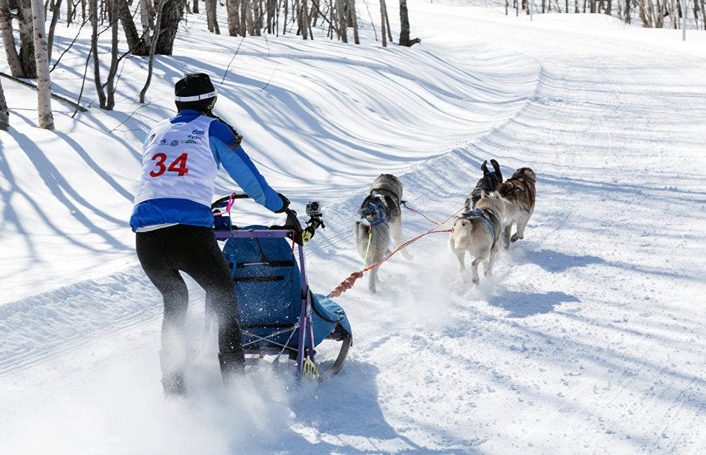 Nadezhda-2016 Sled Dog Race begins in Chukotka