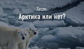 Арктика или нет?