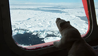 «Атомфлот» совершит четыре круизных рейса к Северному полюсу летом 2016 года