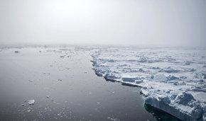 «Гринпис России» передал послу Норвегии требования о защите Арктики