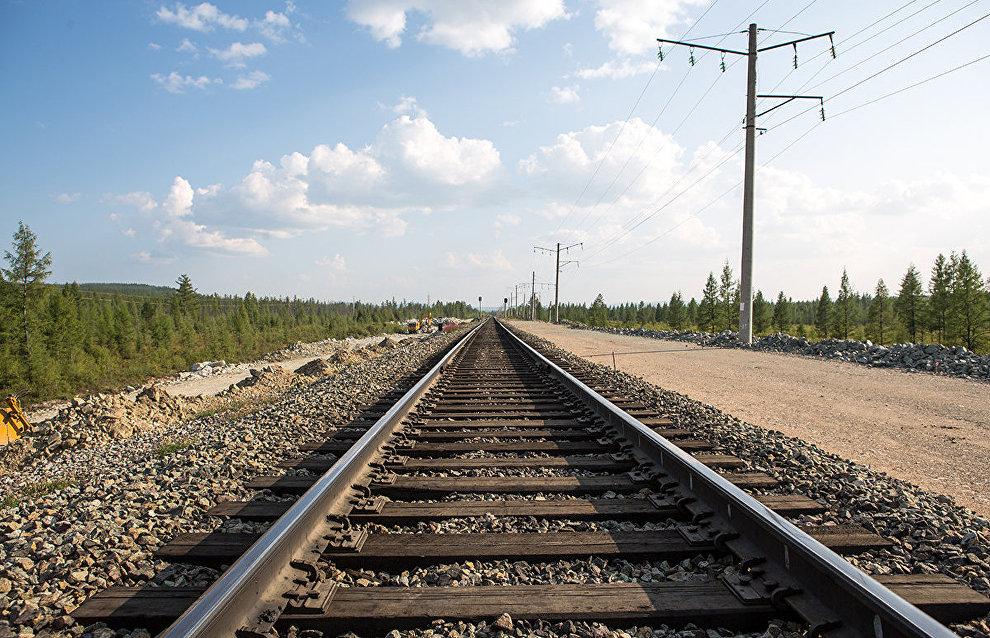 Rogozin urges proper implementation of Belkomur project