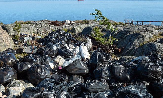 Scientists, volunteers cleanup, reclaim Bely Island in Russian Arctic