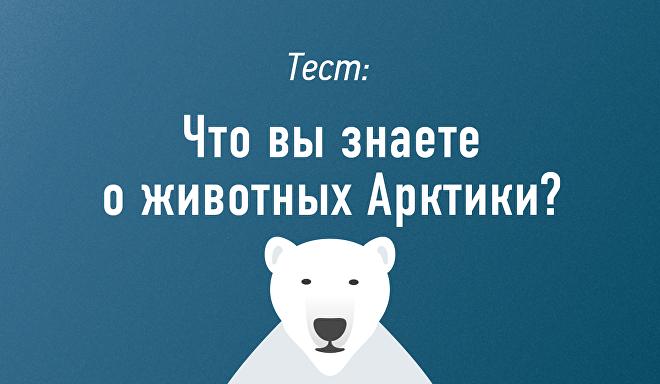 Что вы знаете о животных Арктики?