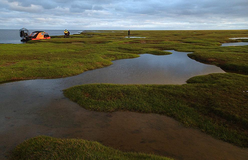 Exploration of Yamal Peninsula's western coast near Sharapovy Koshki Islands