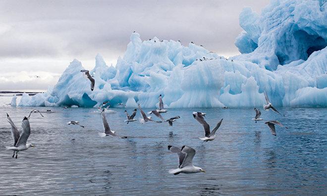 Iceberg in Tikhaya Harbor, Franz Josef Land, Russian Arctic National Park