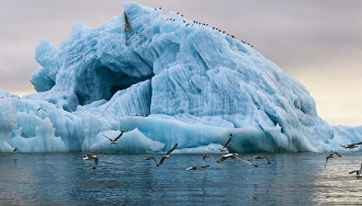 Arctic investment programs should be evaluated by government experts
