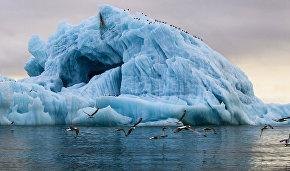 Игорь Шумаков: новые острова в Арктике возникают из-за таяния ледников