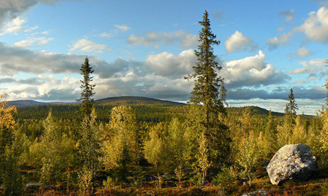 Lapland Biosphere Reserve to get a tourist trail