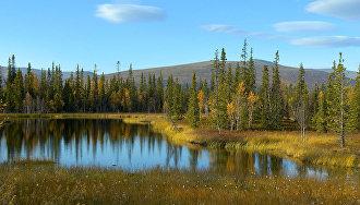 Лапландский заповедник. Типичный ландшафт