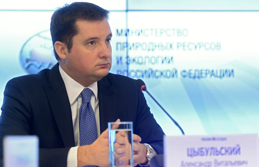 Deputy Minister of Economic Development Alexander Tsybulsky
