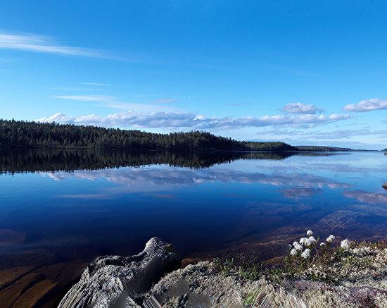 The Pasvik Nature Reserve