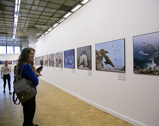 Арктика на фестивале «Первозданная Россия»