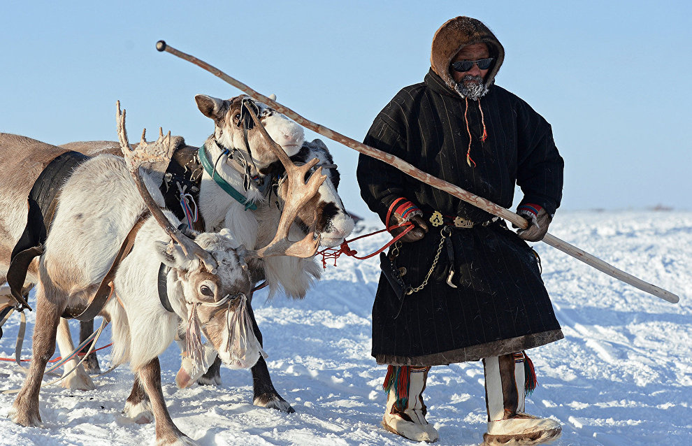 Arctic Skills international reindeer herding competitions begin in Yakutia