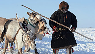 Yamal reindeer herders to get legal assistance in their native languages