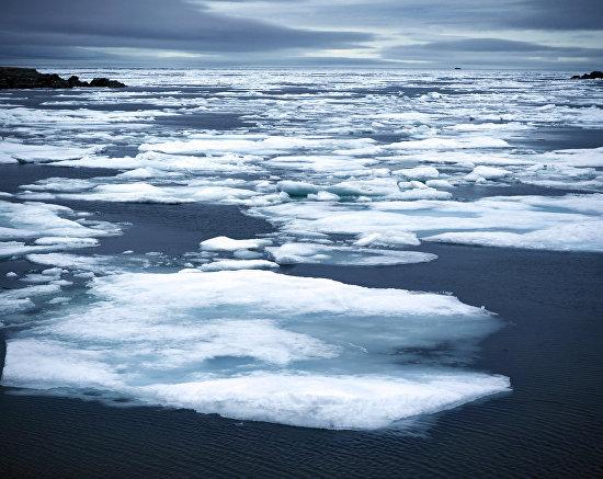 Льды прижало к югу Новой Земли. Июль 2015