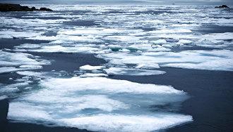 Швейцария намерена добиваться статуса наблюдателя в Арктическом совете