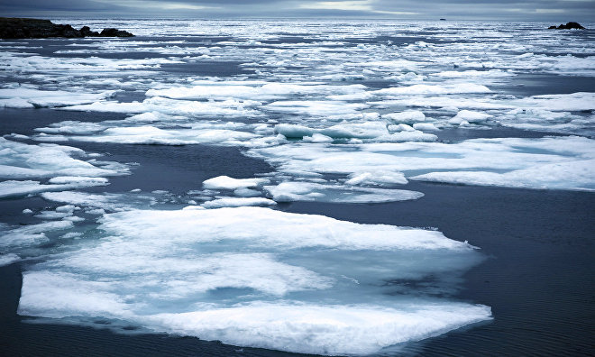 Switzerland to apply for observer status in the Arctic Council